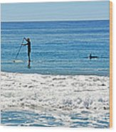 Paddle Boarder And Dolphin Wood Print