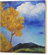 Paesaggio Wood Print