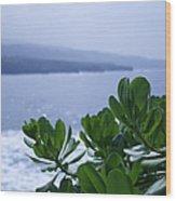 Pailoa Near Mokulehua At Hale 'o Pi'ilani Heiau Maui Hawaii Wood Print
