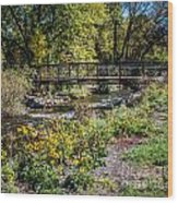 Paint Creek Bridge Wood Print