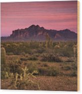 Paint It Pink Sunset  Wood Print