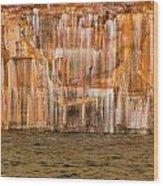 Paint Of The Creator Wood Print