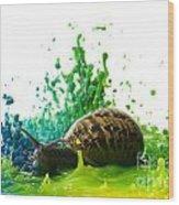 Paint Sculpture And Snail 4 Wood Print