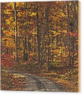 Painted Autumn Country Roads Wood Print
