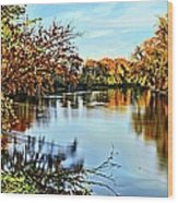 Painted Autumn River Wood Print