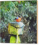 Painted Bullfinch S1 Wood Print