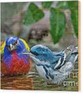 Painted Bunting & Cerulean Warbler Wood Print