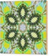 Painted Cymatics 181.66hz Wood Print