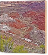 Painted Desert From Rim Trail In Petrified Forest National Park-arizona Wood Print
