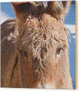 Painted Donkey 1 Wood Print