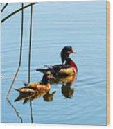 Painted Ducks Wood Print