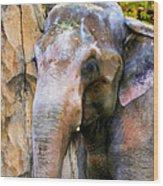 Painted Elephant Wood Print