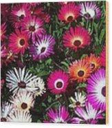 Painted Flowers Wood Print