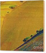 Painted Hills 5 Wood Print