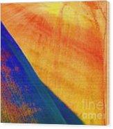 Painted Hills 6 Wood Print