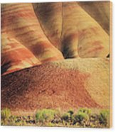 Painted Hills And Grassland Wood Print