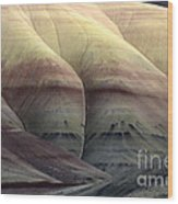 Painted Hills Oregon 9 Wood Print