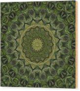 Painted Kaleidoscope 11 Wood Print