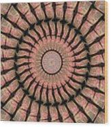 Painted Kaleidoscope 19 Wood Print