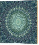 Painted Kaleidoscope 6 Wood Print