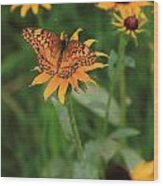 Painted Lady With Friends Wood Print