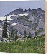 Painted Landscape Wood Print