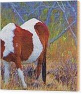 Painted Marsh Mare Wood Print
