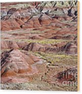 Painted Mounds Wood Print
