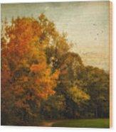 Painted Path Wood Print