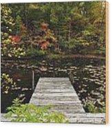 Painted Pond Wood Print