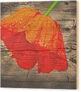 Painted Poppy On Wood Wood Print