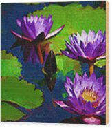 Painted Purple Water Lilies Wood Print