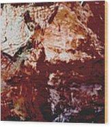 Painted Rock Wood Print