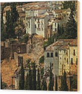 Painted Ronda. Spain Wood Print by Jenny Rainbow
