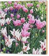 Painted Spring Exhibit Wood Print