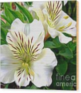 Painterly Alstroemeria Wood Print by Kaye Menner