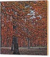 Painterly Style Autumn Trees Wood Print
