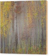 Painting Of Trees In A Forest In Autumn Wood Print