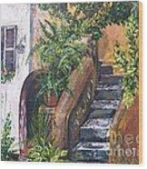 Painting    Siesta Steps Wood Print