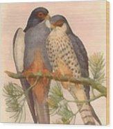 Pair Amur Falcons Wood Print