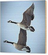 Pair In Flight Wood Print