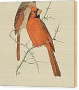 Pair Of Cardinals Wood Print