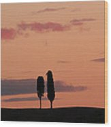 Pair Of Cypress Trees And Morning Sky In Tuscany Wood Print