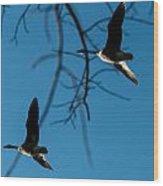 Pair Of Geese Wood Print