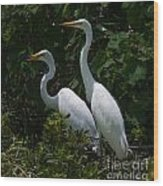 Pair Of Herons Wood Print