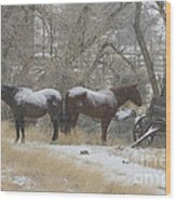 Pair Of Horses In A Snow Storm   #0559 Wood Print