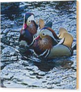 Pair Of Male Mandarin Duck-signed-#8236 Wood Print
