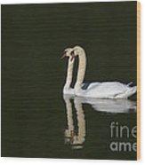 Pair Of Mute Swans Wood Print