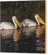Pair Of Pelicans   #6935 Wood Print