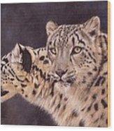 Pair Of Snow Leopards Wood Print